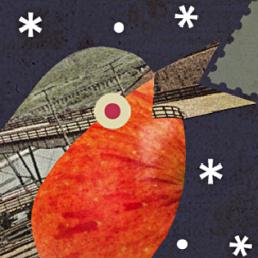 Robin Birdseed Christmas Card Dougie Scott