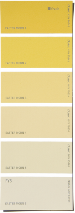 Eastermorn  Dulux Paint Swatch