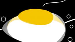 Poached egg detail. Dougie Scott