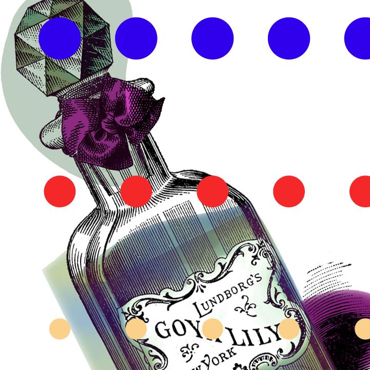 Goya Lily. Dougie Scott