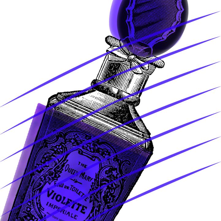 Violette perfume. Dougie Scott